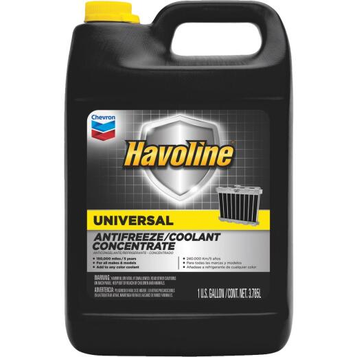 Havoline Universal Gallon Concentrate -34 F to 265 F Automotive Antifreeze