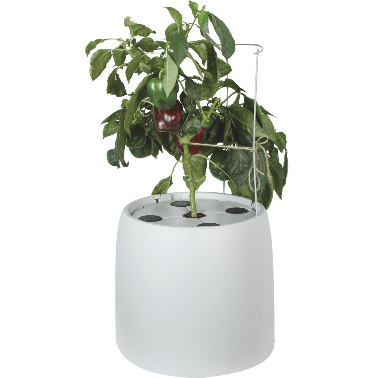 Root Farm 6 Gal. Hydroponic Growing System Image 1