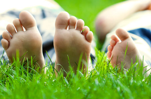 Eco-friendly Lawn Care Tips